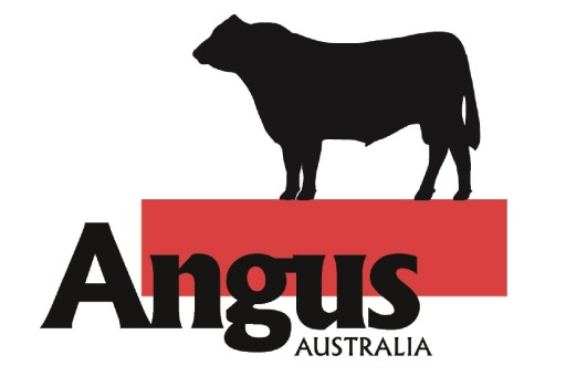 Angus Australia low res_Page_1 (2)