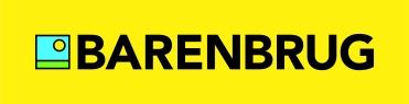 BB_logo_LS_yellow_FC_u (002)